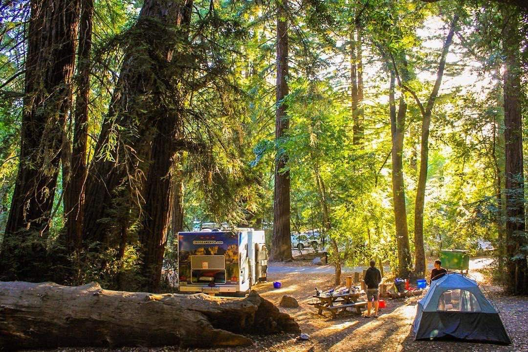 Cruise-America-RV-Rental-Redwood-National-Park-andreeabercu.jpg