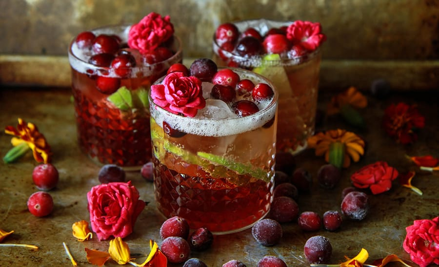rv-rental_camping-cocktail_Apple-Cranberry-Moscow-Mule-(1).jpg